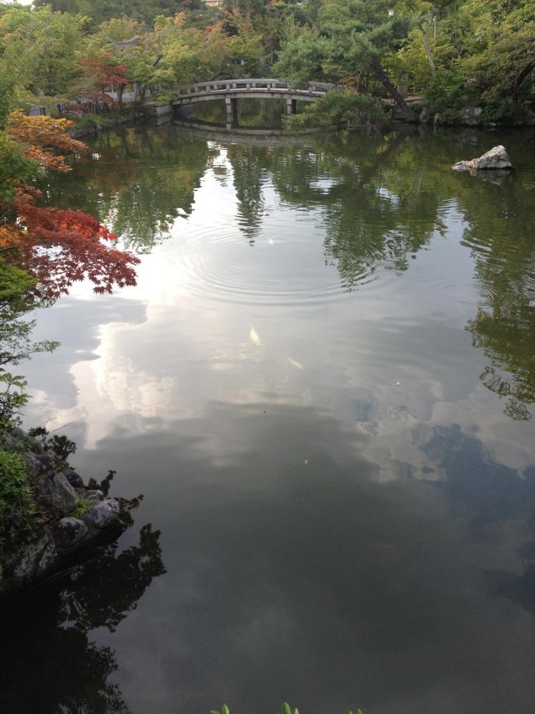 20120819-012414.jpg